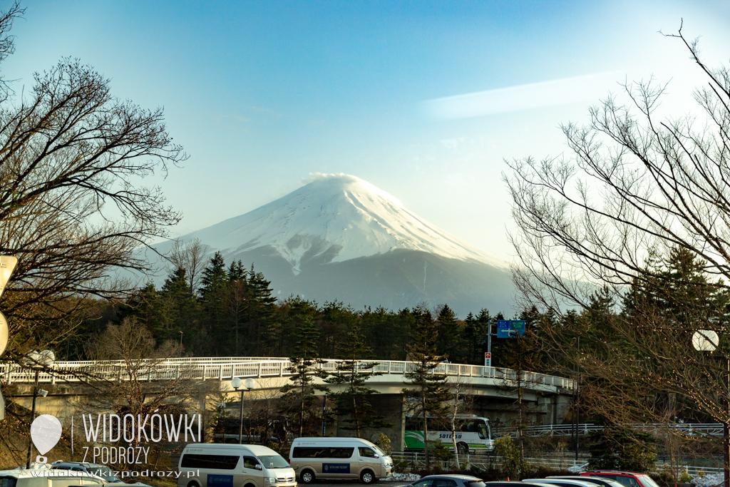 Co królik pokazał jenotowi, czyli Park Narodowy Góry Fudżi