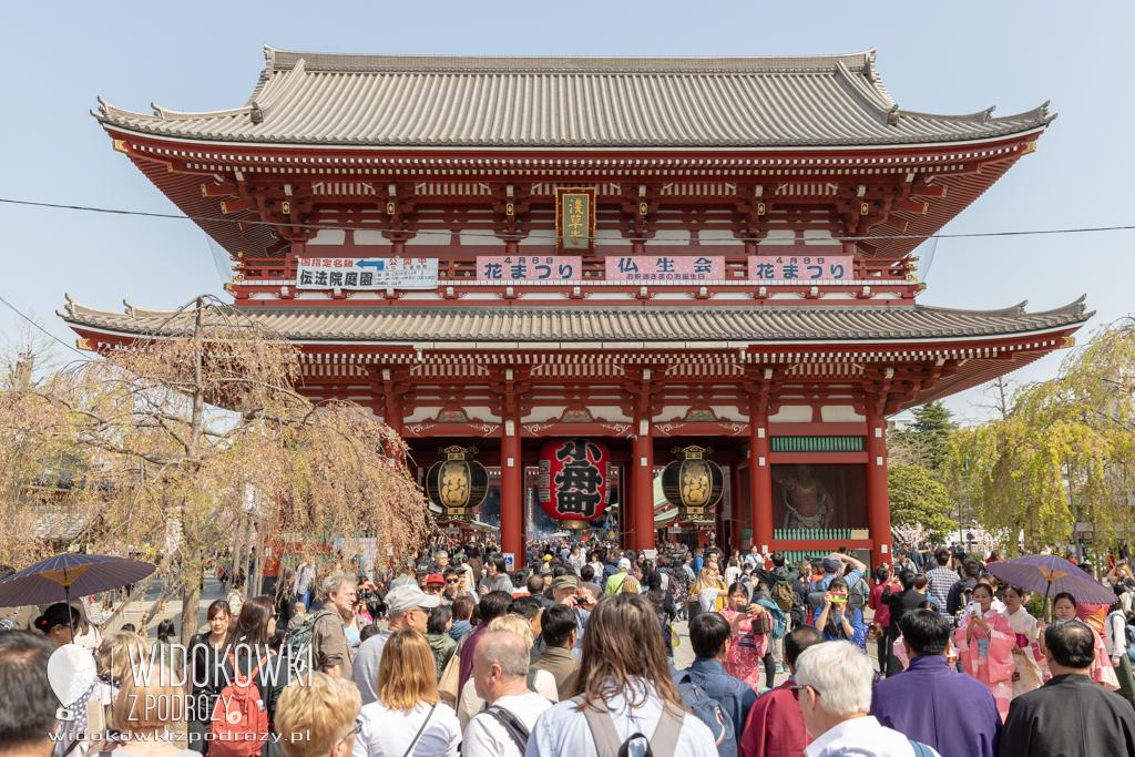 5,5 centymetrów współczucia, czyli Asakusa w Tokio