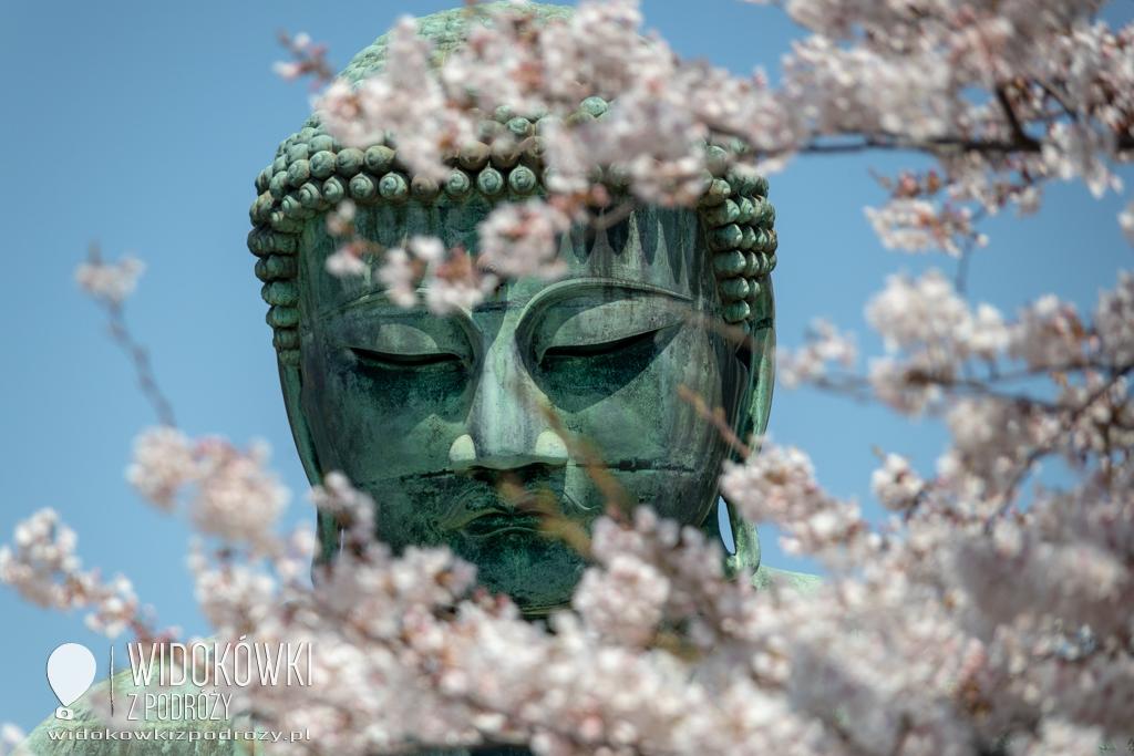 Daibutsu, czyli Wielki Budda z Kamakury