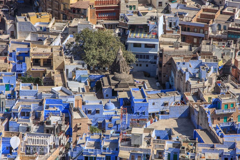 Jodhpur Błękitne Miasto Radżastanu, czyli Incredible India