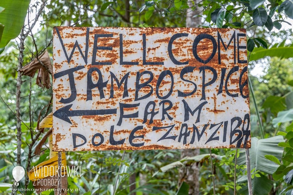 Znasz-li ten kraj, gdzie cynamon dojrzewa, czyli spice farm na Zanzibarze