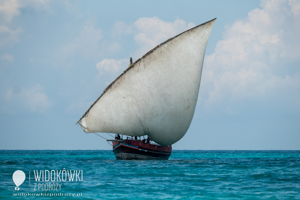 Blue Safari, czyli na nieznanych wodach Zanzibaru